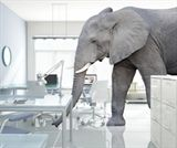Elephants in the Room Part I: The Big Four's Expansion in the Legal Services Market