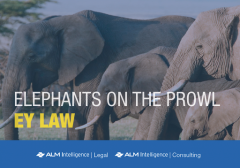 Elephants on the Prowl: EY Law